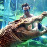 Darwins Antwort auf Crocodile Dundee