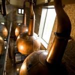 Tullamore Visitor Centre: Alter Whiskey in neuen Gläsern