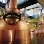 Das neue Gold des Vinschgau: Italiens erster Whisky kommt aus Glurns