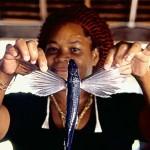 Fliegende Fische & heiße Rhythmen auf Barbados
