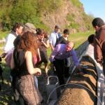 Frühjahrsgenus in Südtirol: Spargelspitzen und Weinsafari