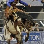 Aufsatteln zum größten Rodeo der Welt in Houston