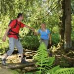 Wandern mit Diplom in der Solling-Vogler-Region