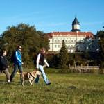 Brandenburgs Burgen wandernd entdecken