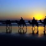 Abschlag unter Palmen: Golfvergnügen in Marokko