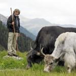 Almauftrieb mit Reinhold Messner & seinen Yaks