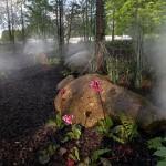 In 80 Gärten um die Welt: Gartenschau in Hamburg – Karten zu gewinnen