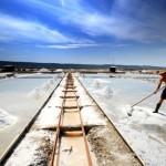 Slowenien einmal anders: Selber ernten auf den Salzfeldern von Sečovlje