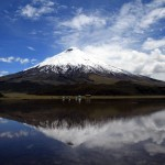 Höhenrausch auf Ecuadors Straße der Vulkane