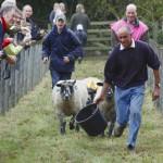 Yorkshire – Steinmauern, Schafe und gutes Essen