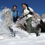 Sonnenskilauf für Sterngucker: Im Südtiroler Eggental glitzert nicht nur der Schnee