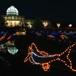 """Stimmungsvolles Virginia: Lichterspektakel """"100 Miles of Lights""""mit zwei Millionen Lämpchen"""