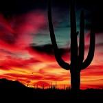 Himmels-Faszination in Arizona: Ich bremse auch für Sonnenuntergänge