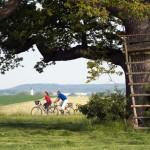 Wenig Steigung, viel Vergnügen – Radfahren im Romantischen Franken