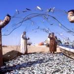 Geschäftige Souks plus Sonnengarantie – Orient-Feeling im Sultanat Oman