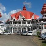 100 Shades of Green: Suriname lockt mit unberührtem Regenwald und kultureller Vielfalt