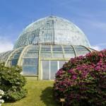 Im Pflanzenparadies der belgischen Krone