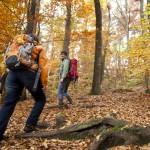 Neues Wandertourismus-Portal macht Lust auf Urlaub in Baden-Württemberg