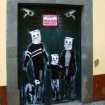 Street Art vom Feinsten verschönert Madeira