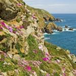 Bilderbuchsommer auf Guernsey – Blumenschlacht, Märkte und Musik am Meer