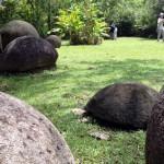 Erste UNESCO-Welterbestätte für Costa Rica