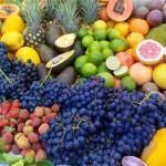 Kulinarische Entdeckungsreise durch Queensland