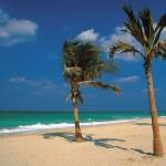 Sharjah – im, auf und unter Wasser an zwei Küsten