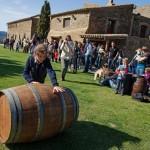 Empordà – eine neue Weinstraße durch Katalonien