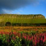 Sligo feiert ein ganzes Jahr lang William Butler Yeats