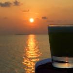 Karibisch feiern mit leckeren Cocktails aus Aruba