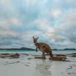 Unbekannte Naturschönheiten in Westaustralien