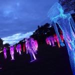 Mons eröffnet feierlich das Kulturhauptstadtjahr