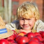 Kulinarische Erlebnisse im Alten Land am Elbstrom