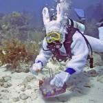 Florida lockt mit Ostereiersuche unter Wasser