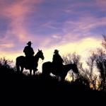 Herrliche Wüste(n) Erlebnisse rund um Scottsdale