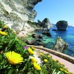 Korsika –faszinierendes Hochgebirge im Meer