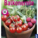 Balkonernte – Kräuter & Gemüse vorm Fenster