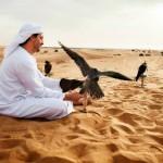 Faszinierende Schönheit aus Sand:Auf Entdeckungstour durch die Wüste von Dubai
