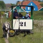 Die Nordseensel Spiekeroog feiert ihre Pferdebahn