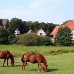 Wandern auf alten Pilgerwegen – auf dem Jakobsweg durch Niedersachsen