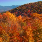 Fall of Fame –farbenfrohe Herbsterlebnisse im amerikanischen North Carolina