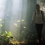 Wundertüte im Dschungel – Kolumbiens exotische Amazonas-Region