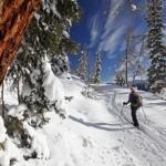 Winterwandern mit Ausblick in der Steiermark