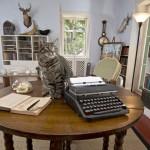 Hemingways potentieller Nachfolger gesucht