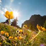 Österreichs Wanderdörfer feiern 25. Geburtstag