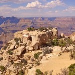 Ungeahnter Artenreichtum im Grand Canyon