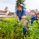 Blühendes Garten-Rendezvousam Bodensee