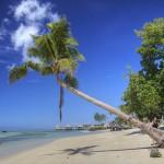 Samoa – sportliches Inselreich im Südpazifik
