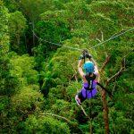 Mit 70 Sachen am Seildurch den Regenwald