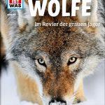 Fakten über den grauen Jäger – was Kids über Wölfe wissen wollen